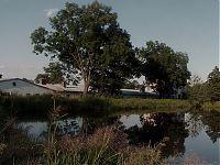 Rybníček nad Novými Homolemi