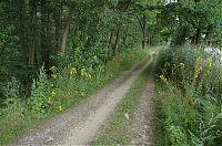 Cesta okolo rybníka Vítek