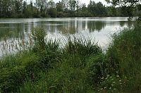 Rybník Vítek 2