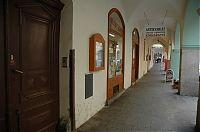 Česká ulice 5