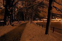 V parku 3