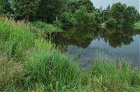 Žišpašský rybník 2