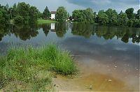 Žišpašský rybník 3