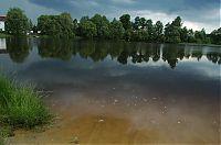 Žišpašský rybník 4