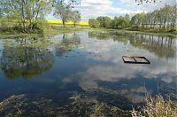Rybník u Srubce 2