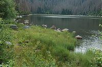 Plešné jezero 3